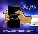 ShinyBrick